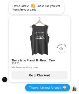 messenger cart abandonment campaign example